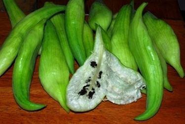 Primo piano dei frutti di caigua