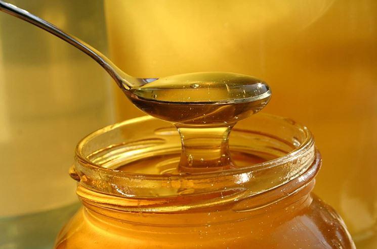 Ricette miele