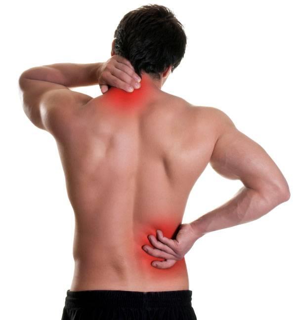 Mal di schiena - Ossa e muscoli